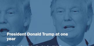 Trump at One Year